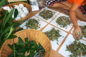 cursos de pindas herbales