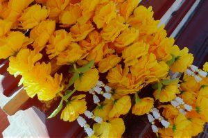 yellow thai flowers